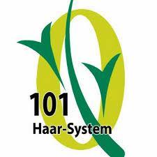101 Haar System