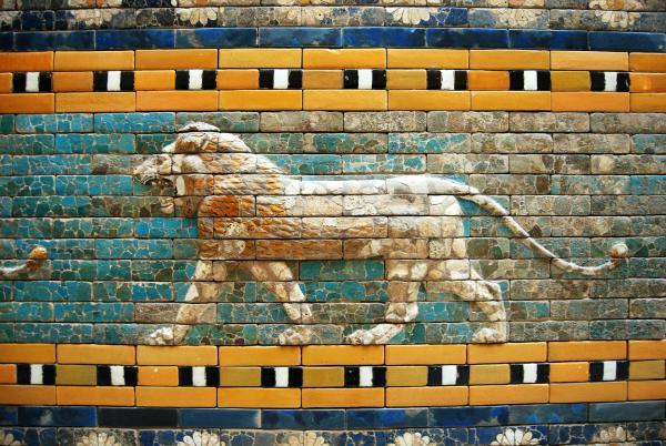 lion-510159_1920